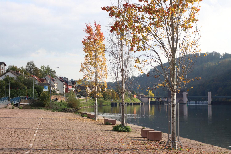 Autumn Tour 2020 Stage 3 – Großheubach to Neckargemünd