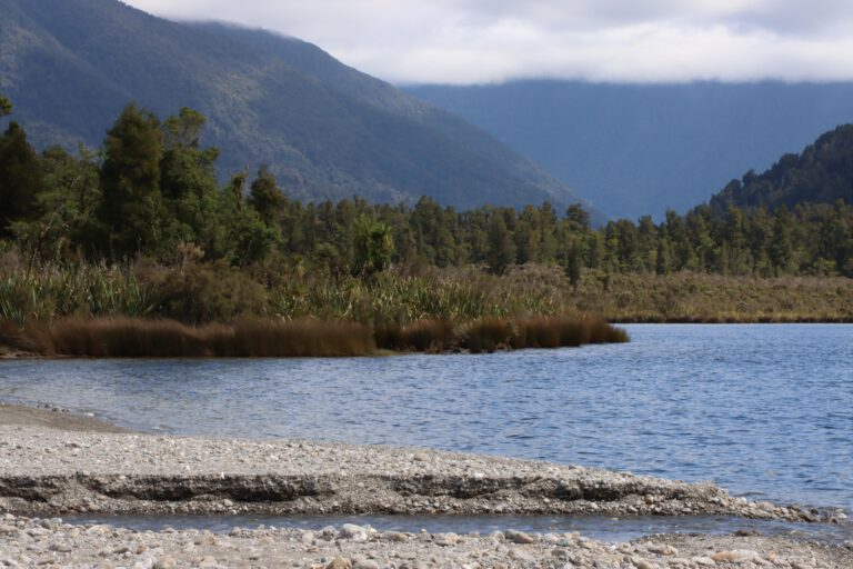 New Zealand 2019/20 Stage 5 – Fox Glacier to Lake Paringa