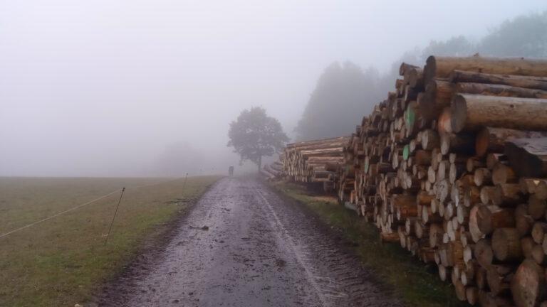 Autumn Tour 2020 Stage 1 – Hemsbach to Mainflingen